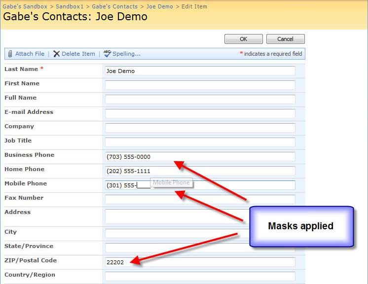 Input-masks in a SharePoint Contact Form